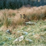 Lower Gallanach Site 13