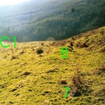 Lower Gallanach Bank B