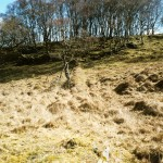 Cruach Mor Bank C