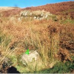 Lower Creachan Beg Bank D