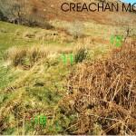 Upper Creachan Beg Area 1 Bank E