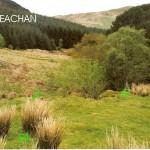 Cruach Moine Phuill Bank E