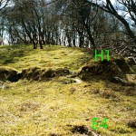 Cruach Mor Bank E