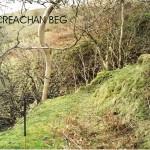 Upper Creachan Beg Area 2 Bank F
