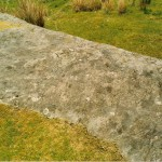 Cruach Moine Phuill Site 10