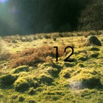 Lower Gallanach Site 12