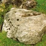 Cruach Moine Phuill Site 4