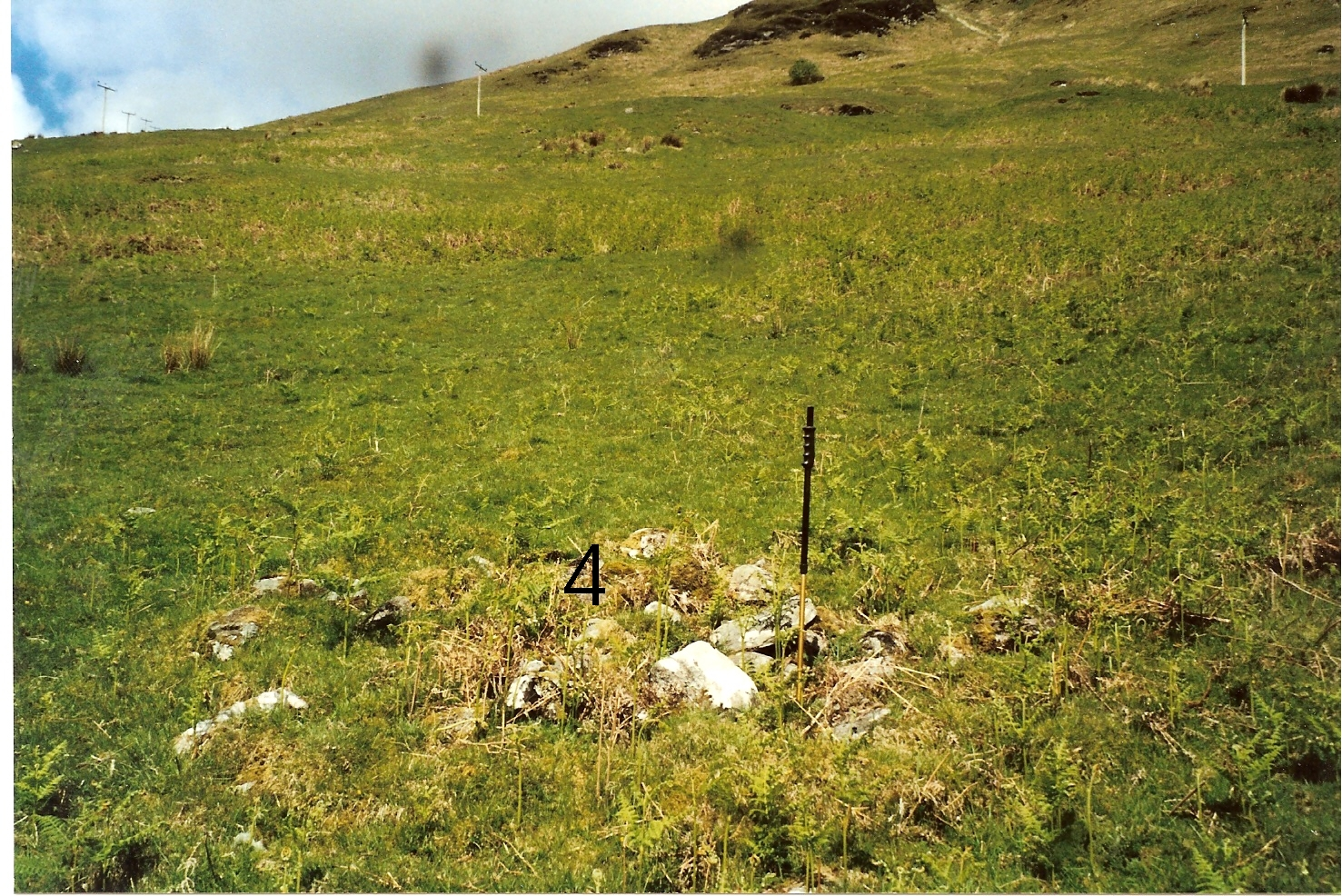 Upper Gallanach Site 4