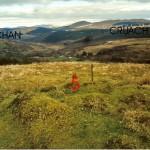 Cruach Moine Phuill Site5
