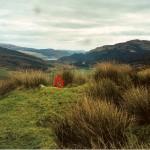 Cruach Moine Phuill Site 6