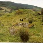 Cruach Moine Phuill Site 14