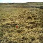 Cruach Moine Phuill Site 9