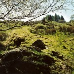 Cruach Mor Site Bank P