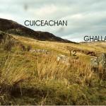 Cruach Moine Phuill Site 12