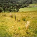 Creag Na Sceithe -  Cnocan Sceithe Site 1 W