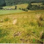 Creag Na Sceithe -  Cnocan Sceithe Site 1 NW
