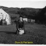 Dunc & Pet lamb