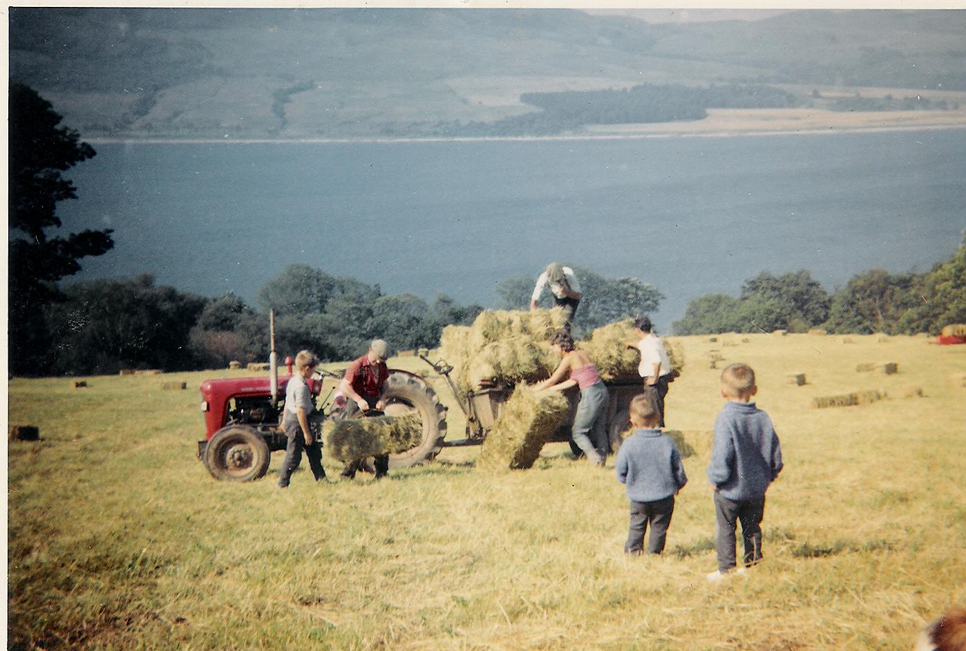 Hay Making Ardentraive